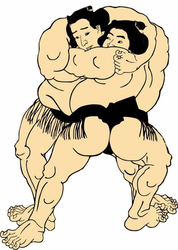 相撲は国技ではない